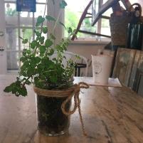herbsin jar kerbers