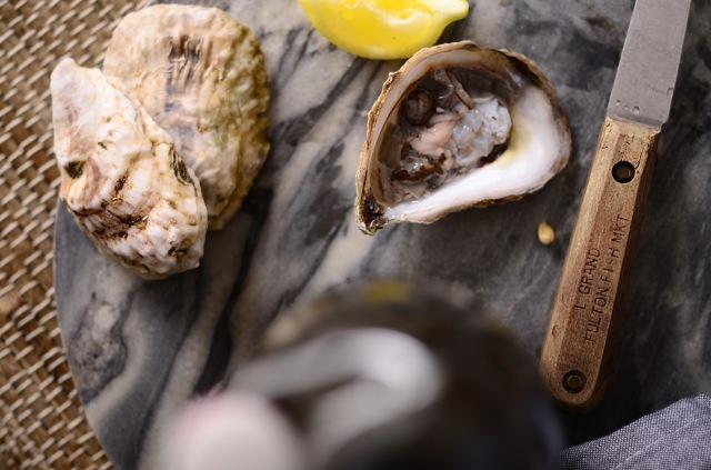 oyster close up longfork.jpg