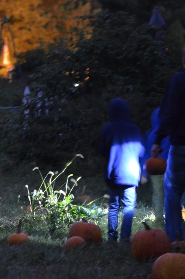 OT moonlight Pumpkin Picking blue sweatshirt.jpg