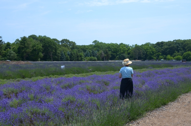 woman with hat lavendar